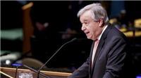 Phản ứng quốc tế về nghị quyết ngừng bắn tại Syria
