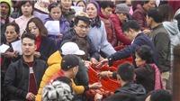 Hà Nội: Phóng sinh hơn 5 tấn cá xuống sông Hồng