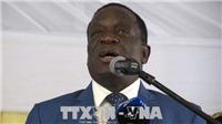 Zimbabwe sẽ tiến hành tổng tuyển cử vào tháng 7 tới