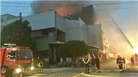 Cháy nhà xưởng ở Đài Loan (Trung Quốc), nhiều lính cứu hỏa thiệt mạng