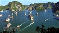 5 du khách ngoại bị 'bỏ rơi' được hỗ trợ dịch vụ tàu nghỉ đêm trên Vịnh Hạ Long