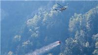 Hàng chục người thiệt mạng trong vụ rơi máy bay tại Thụy Sĩ