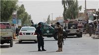 Quân đội Afghanistan tiêu diệt chỉ huy chiến trường cấp cao của Taliban