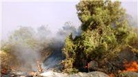Huy động hơn 500 người tham gia dập tắt đám cháy rừng tại Quảng Bình