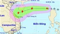 Theo dõi chặt chẽ, chủ động các biện pháp ứng phó với áp thấp nhiệt đới