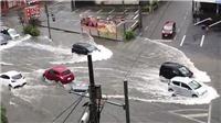 Nhiều cơn bão đe dọa các nước và vùng lãnh thổ tiếp giáp Đại Tây Dương và Thái Bình Dương