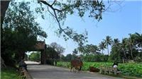 Hà Nội nâng cao hiệu quả bảo tồn và phát huy giá trị di tích Làng cổ ở Đường Lâm