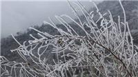 Vùng núi cao Bắc Bộ có băng giá và sương muối