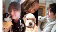 'Bí mật' ít người biết về hội thú cưng của V BTS, Jennie Blackpink
