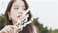 Jisoo Blackpink tiết lộ từng được 'đối thủ' của YG đề nghị làm thực tập sinh