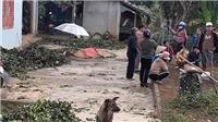 Bắt hung thủ truy sát khiến 5 người thiệt mạng tại Thái Nguyên