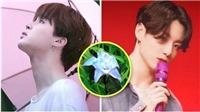 7 manh mối về màn tái xuất của BTS: Cửa hàng hoa Smeraldo, ngoại hình của Jungkook...