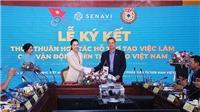 VĐV Việt Nam được hỗ trợ việc làm sau khi giải nghệ