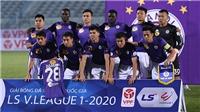 Thai League không phải hình mẫu lý tưởng cho V League!