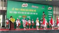 Phát động giải bóng rổ học sinh tiểu học Hà Nội năm 2018