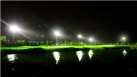 Trải nghiệm golf đêm hấp dẫn tại sân gôn trên đảo lớn nhất Miền Bắc
