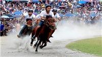 Về Bắc Hà xem 'Vó ngựa Cao nguyên trắng'