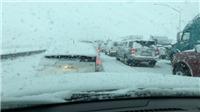 Nhiều người thiệt mạng do bão tuyết và mưa lớn tại bang California, Mỹ
