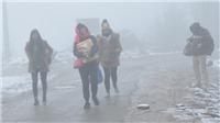 Dự báo thời tiết: Miền Bắc vẫn mưa rét, nhiệt độ vùng núi 10 độ C