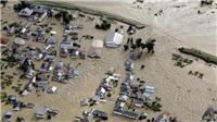 Siêu bão Hagibis: Một lượng rác thải sau khử xạ ở Nhật Bản bị cuốn trôi
