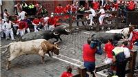 Chạy với bò tót ở Tây Ban Nha: Rủi ro nhưng khó bỏ