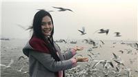 XEM VIDEO: Đầu Xuân, Lương Nguyệt Anhăn chay 'tìm về chốn thiêng'