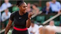 Serena Williams: biểu tượng của nghị lực và sự kiên trì