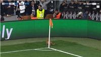 HÀI HƯỚC: UEFA phạt Besiktas vì... để mèo chạy vào sân