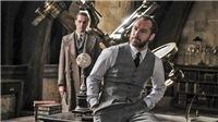 Tranh cãi vụ giới tính thầy Dumbledore 'Harry Potter': Một nửa Hollywood đồng tính, vậy mà...