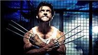 X-Men sẽ ra nhập Vũ trụ Điện ảnh Marvel toàn các siêu nhân như thế nào?