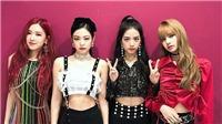 YG xác nhận tất cả các thành viên Black Pink sẽ đều sớm tung dự án solo