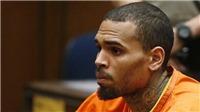 Chris Brown bị bắt ở Pháp vì cáo buộc hiếp dâm, có thể đi tù 15 năm