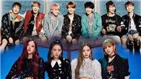 Black Pink được khen là thành công nhờ âm nhạc, còn BTS chẳng qua do chăm lên mạng nói chuyện