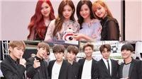 Mất view Youtube, nhiều fan BTS quay sang sỉ vả… Black Pink