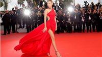 Minh tinh 'chơi lớn' mà vẫn thanh lịch ở Cannes, những 'khách mời vô danh' nhìn mà học
