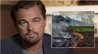 Tổng thống Brazil: 'Leonardo DiCaprio, anh đang tài trợ đốt rừng Amazon đấy'