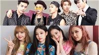 Fan ngao ngán vì YG Ent. tiếp tục hoãn lịch comeback của Blackpink và Bigbang