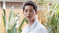 Nữ luật sư lao đao vì bị nghi là bạn gái của Song Joong Ki