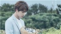ARMY quay cuồng trước cập nhật bí ẩn về Jin BTS trên trang Smeraldo