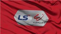 Link xem trực tiếp bóng đá HAGL vs TPHCM. Trực tiếp bóng đá Việt Nam vòng 13