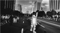 'Seoul – 4 thập kỷ hóa siêu đô thị' qua ảnh