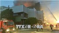 Sớm bố trí việc làm cho hơn 160 lao động Việt Nam bị mất việc làm do cháy xưởng tại Đài Loan (Trung Quốc)