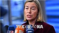 EU ủng hộ giải pháp chính trị, nhiều nước chia sẻ quan điểm phản đối hành động quân sự tại Syria