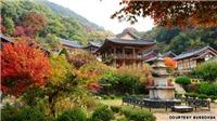 UNESCO công bố các di sản thế giới mới tại Hàn Quốc và Ấn Độ