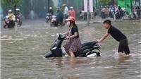 Những cơn bão mạnh nhất đổ bộ vào Việt Nam và nhiều quy luật của bão đã bị phá vỡ