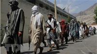 Afghanistan thông báo bắt giữ hàng trăm tay súng IS
