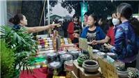 Hà Nội khai mạc Hội chợ hàng hóa nông sản thực phẩm Tết Canh Tý 2020
