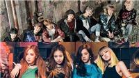 Black Pink tái xuất gần ngày với BTS: Nước cờ hiểm của nhà YG?