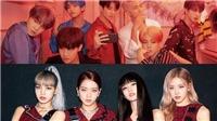 Fan BTS xin lỗi Black Pink vì lan truyền tin đồn sai lệch này!