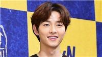 Thực hư tin đồn Song Joong Ki hẹn hò với nữ luật sư xinh đẹp